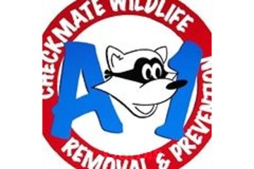 A1 - Checkmate Wildlife Removal