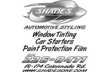 Shades Window Tinting