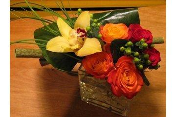 Zen Le Pouvoir des Fleurs à Montréal
