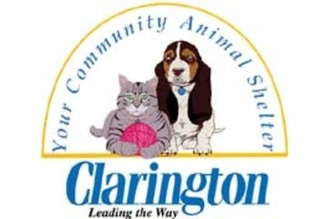 Animal Services-Municipality Of Clarington in Bowmanville