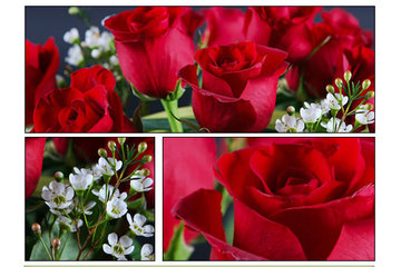 Fleuriste Foliole in Rosemère: bouquet de roses fleuriste foliole