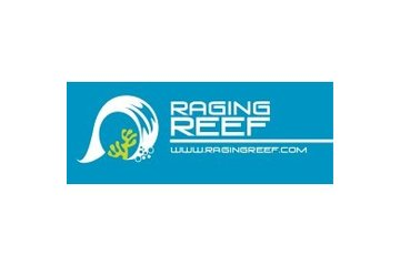 Aquarium Récifal raging reef Inc