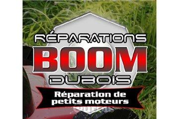 Réparations de petits moteurs Boom Dubois