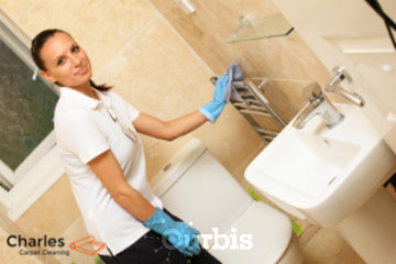 Charles Carpet Cleaning in Richmond