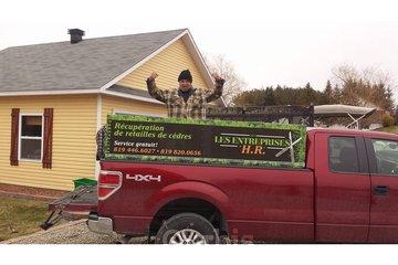 Récupération de Retailles de cèdre HR à Sherbrooke