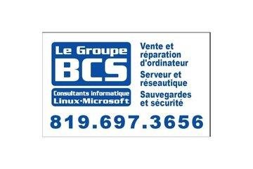 Le Groupe Bcs