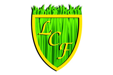 Lawn Care by Felix Weed Control