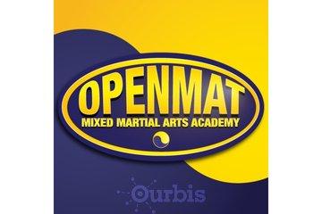 OpenMat MMA
