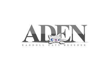 ADEN RAGDOLL CATTERY