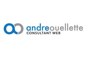 André Ouellette, Consultant web