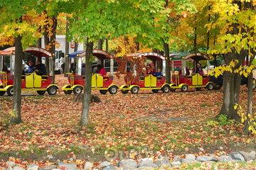 Camping Choisy à Rigaud: petit train
