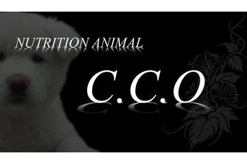 Nutrition Animal CCO