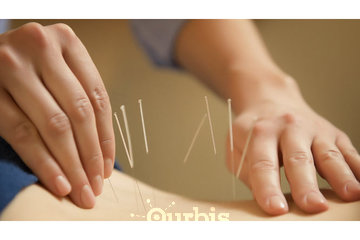 Annex Naturopathic Clinic in Toronto: Toronto acupuncture