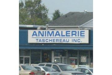 Animalerie Bêtes... Pas Bêtes!