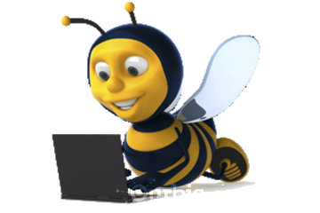 Social Bee Web Marketing and Design