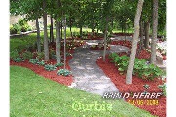Brin D'Herbe in Candiac: 3
