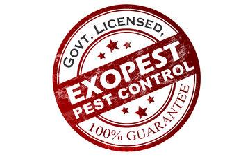 Exopest Pest Control