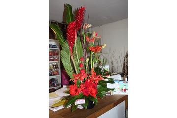 Mimosa fleurs et cadeaux à Longueuil