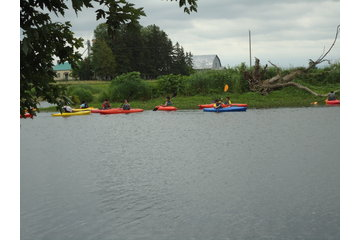 Kayak Safari à Huntingdon