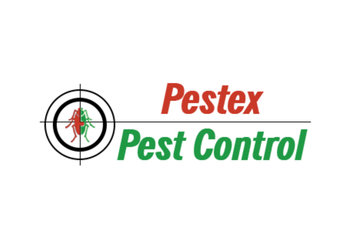 Pestex Pest Control