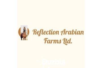 Reflection Arabian Farms Limited